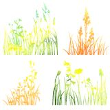 Four silhouettes  of flowers and grass Stock Photography
