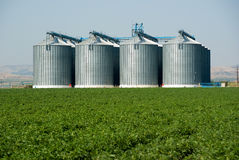 Four Silos Royalty Free Stock Photo