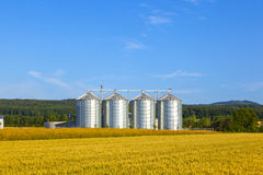 Four silver silos Royalty Free Stock Photography