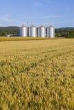 Four silver silos Royalty Free Stock Photo