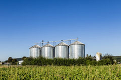 Four silver silos in field under   blue sky Royalty Free Stock Image