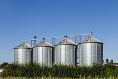 Four silver silos in field under   blue sky Royalty Free Stock Photo