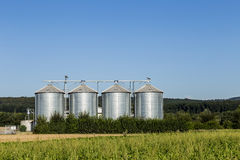 Four silver silos in field under   blue sky Royalty Free Stock Images