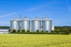 Four silver silos in field under bright sky Royalty Free Stock Photos