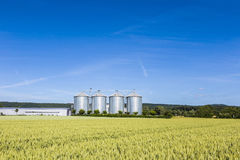 Four silver silos in field under bright sky Stock Images