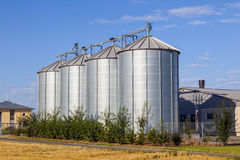 Four silver silos under blue sky Royalty Free Stock Photo