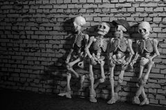 Free Four Skeleton Friends Royalty Free Stock Image - 91911706