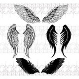 Four sketches of wings Stock Images