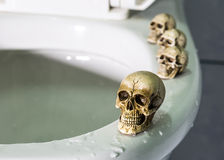 Four skulls on rim swimming pool(toilet). Royalty Free Stock Photography