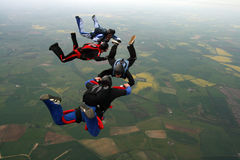 Four skydivers. Building a formation Stock Photography
