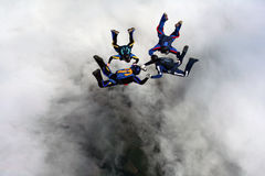 Four Skydivers. Performing formations during a skydive Stock Photography