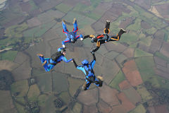 Four skydivers. In a start formation Stock Image