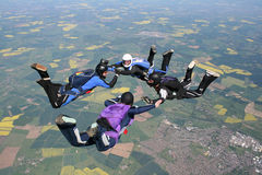 Four skydivers in freefall. Doing formations Royalty Free Stock Photos