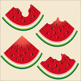 Four slices of watermelon with bones, whole, three bitten. On a colored background Stock Photos