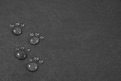 Four small animalistic footprints. On black background stock photography