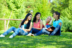 Four smiling student girls studying in green park Royalty Free Stock Photography