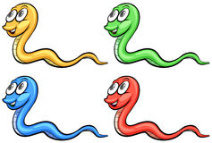 Four snakes Royalty Free Stock Photos