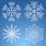 Four snowflakes Stock Images