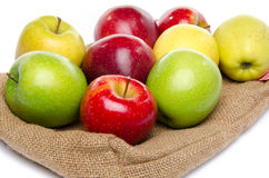 Four sorts of apple on a burlap bag Stock Images