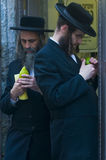 The Four species market. JERUSALEM - OCT 10 : An ultra-orthodox Jewish men inspects an Etrog   in the Four spesies market in Jerusalem Israel on October 10 2011 Stock Image