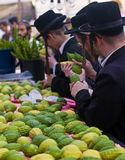 The Four species market. JERUSALEM - OCT 10 : An ultra-orthodox Jewish men inspects an Etrog   in the Four spesies market in Jerusalem Israel on October 10 2011 Royalty Free Stock Photography