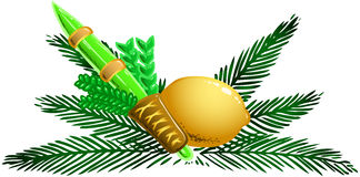 Four Species for Rosh Hashana Version 1. Vector illustration of the four species for Sukkot Jewish holiday Stock Photos