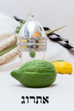 The four species for Sukkot Royalty Free Stock Photos
