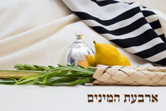 Sukkot. etrog and lulav with talit. Text - four species Stock Photography