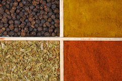Four spices Royalty Free Stock Images