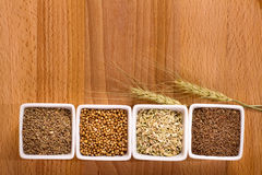 Four spices with ears above Royalty Free Stock Image
