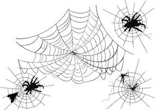 Four spider webs Stock Photos