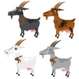 Four spotted goats, grey, white, brown and black. Four spotted cartoon goats, grey, white, brown and black, vector animals on white background Royalty Free Stock Image