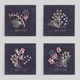Four square cards. Hand drawn creative flower. Colorful artistic background with blossom. Abstract herb. It can be used for invitation, thank you message Stock Image