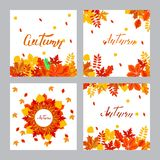 Four square vector banners with autumn and lettering, vector ill. Ustration vector illustration
