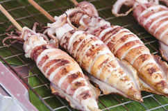 Four squid in. Charcoal grilled squid on vacation Royalty Free Stock Photography