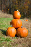 Four stacked Pumpkins Royalty Free Stock Image