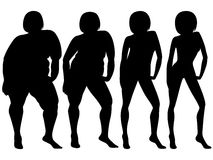 Four stages of a female slimming, silhouettes Royalty Free Stock Image