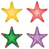 Four Starfish samples  Royalty Free Stock Photo