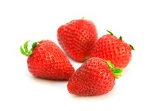 Four strawberries. Four freshly picked strawberries on a white background royalty free stock images