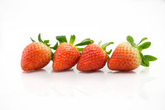Four strawberries. Stock Photography