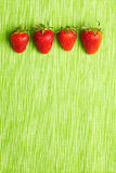 Four strawberries in a row Royalty Free Stock Photo