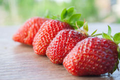 Four strawberries in a row. Focusing on the second Stock Images