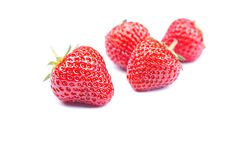 Four strawberries on a white background with shadow, side view Royalty Free Stock Image