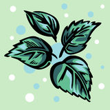 Four stylized green leaves. Royalty Free Stock Photos