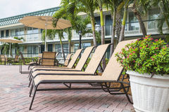 Four sun loungers by the poolwith palms.  Florida Royalty Free Stock Photo