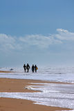 Four surfers. Four bodyboard surfers walking down the shoreline of a beach Stock Photos
