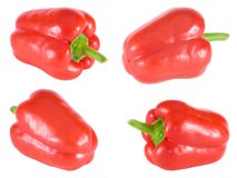 Four sweet bulgarian peppers Stock Photos