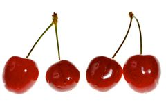 Four sweet cherries Stock Images