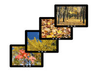 Four tablet computers with images of Autumn Royalty Free Stock Image