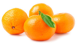 Four tangerine with leaf on a white background Stock Images